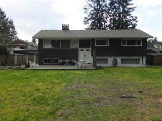 Photo 17: 21639 MOUNTAINVIEW CRESCENT: House for sale : MLS®# R2045294