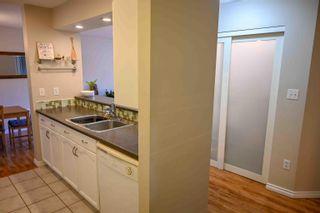 Photo 4: 241 10636 120 Street in Edmonton: Zone 08 Condo for sale : MLS®# E4265580