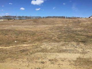Photo 6: 16 River Ridge Estates: Rural Wetaskiwin County Rural Land/Vacant Lot for sale : MLS®# E4253383