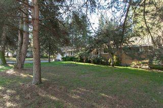 "Photo 2: 9671 161A Street in Surrey: Fleetwood Tynehead House for sale in ""TYNEHEAD AREA"" : MLS®# R2597946"