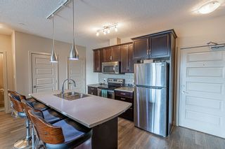 Photo 3: 233 503 ALBANY Way in Edmonton: Zone 27 Condo for sale : MLS®# E4240556