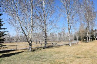 Photo 41: 180 INGLEWOOD Cove SE in Calgary: Inglewood Semi Detached for sale : MLS®# C4289561