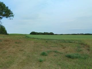 Photo 5: : Rural Beaver County Rural Land/Vacant Lot for sale : MLS®# E4239437