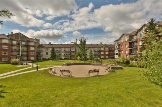 Photo 21: 218 6315 135 Avenue in Edmonton: Zone 02 Condo for sale : MLS®# E4253606