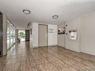 Photo 6: LA JOLLA Condo for rent : 1 bedrooms : 2510 TORREY PINES RD #312