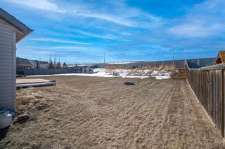Photo 38: 466 Kincora Drive NW in Calgary: Kincora Detached for sale : MLS®# A1084687