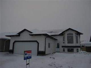 Photo 1: 419 Faldo Crescent: Warman Single Family Dwelling for sale (Saskatoon NW)  : MLS®# 385015