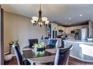 Photo 12: 41 ROYAL BIRCH Crescent NW in Calgary: Royal Oak House for sale : MLS®# C4041001