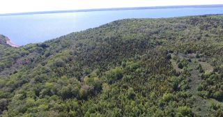Photo 3: LOT Highway 217 in Centreville: 401-Digby County Vacant Land for sale (Annapolis Valley)  : MLS®# 202012827