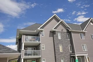 Photo 3: 2317 2317 Tuscarora Manor NW in Calgary: Tuscany Apartment for sale : MLS®# A1119716
