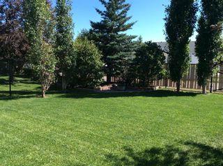 Photo 44: 605 5 Avenue SW: Sundre Detached for sale : MLS®# A1058432
