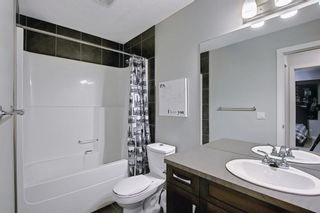 Photo 35: 1484 Copperfield Boulevard SE in Calgary: Copperfield Detached for sale : MLS®# A1137826