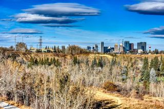 Photo 44: 22 Lissington Drive SW in Calgary: North Glenmore Park Residential for sale : MLS®# A1066780