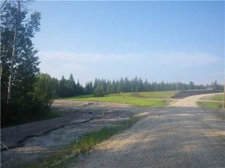 Photo 12: 314 55504 Rge Rd 13: Rural Lac Ste. Anne County Rural Land/Vacant Lot for sale : MLS®# E4213581