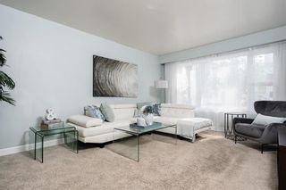 Photo 9: 510 Dominion Street in Winnipeg: Wolseley Residential for sale (5B)  : MLS®# 202118548
