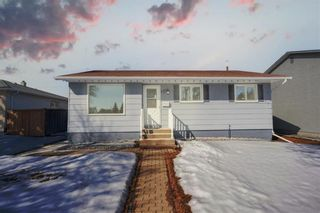 Photo 1: 117 Greenwood Avenue in Winnipeg: Residential for sale (2D)  : MLS®# 202104895