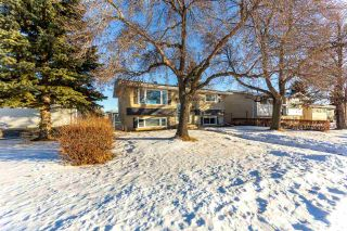 Photo 3: 14911 96 Street NW in Edmonton: Zone 02 House for sale : MLS®# E4225346
