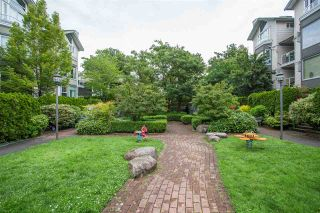 """Photo 13: 101 248 E 18TH Avenue in Vancouver: Main Townhouse for sale in """"NEWPORT"""" (Vancouver East)  : MLS®# R2491770"""
