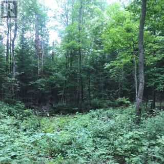 Photo 22: 0 OTTAWA Avenue in South River: Vacant Land for sale : MLS®# 40156406