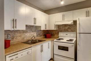 Photo 15: 107 3000 Citadel Meadow Point NW in Calgary: Citadel Apartment for sale : MLS®# A1070603
