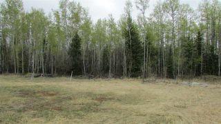 "Photo 5: PRCL A BERYL PRAIRIE Road: Hudsons Hope Land for sale in ""BERYL PRAIRIE"" (Fort St. John (Zone 60))  : MLS®# R2455504"