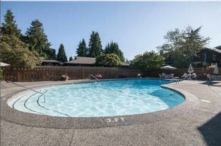 """Photo 19: 102 555 W 28TH Street in North Vancouver: Upper Lonsdale Townhouse for sale in """"Cedarbrooke Village"""" : MLS®# R2548875"""