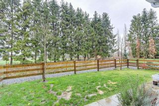 """Photo 20: 81 12161 237 Street in Maple Ridge: East Central Townhouse for sale in """"VILLAGE GREEN"""" : MLS®# R2226728"""