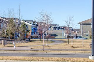 Photo 47: 230 Auburn Bay Boulevard SE in Calgary: Auburn Bay Detached for sale : MLS®# A1045900