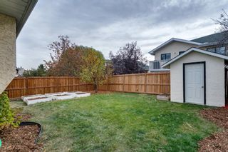 Photo 34: 11 Sanderling Hill NW in Calgary: Sandstone Valley Detached for sale : MLS®# A1149662
