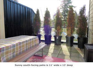 "Photo 10: 225 13789 107A Avenue in Surrey: Whalley Condo for sale in ""Quattro II"" (North Surrey)  : MLS®# R2326632"