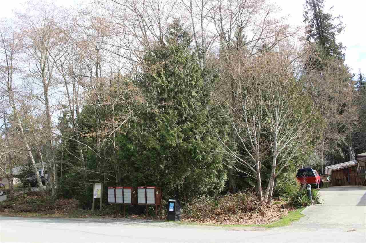Photo 2: Photos: 6142 S GALE Avenue in Sechelt: Sechelt District Land for sale (Sunshine Coast)  : MLS®# R2264834
