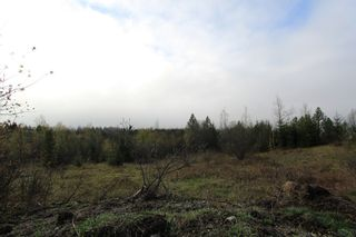 Photo 1: 1/4 2700 Block Squilax Anglemont Road in Lee Creek: North Shuswap Land Only for sale (Shuswap)  : MLS®# 10138544