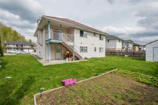 Photo 19: 31856 LINK Court in Abbotsford: Abbotsford West House for sale : MLS®# R2360271