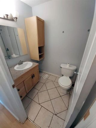 Photo 15: 53 Spring Dale Circle SE: Airdrie Detached for sale : MLS®# A1146755