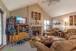 Photo 9: 23614 116 Avenue in Maple Ridge: Cottonwood MR House for sale : MLS®# R2177770