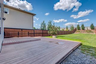 Photo 39: 158 Covemeadow Road NE in Calgary: Coventry Hills Detached for sale : MLS®# A1141855