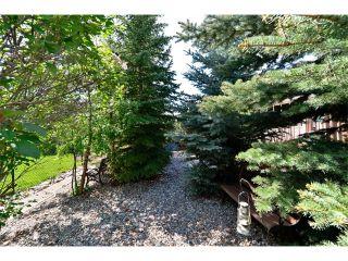 Photo 39: 83 MT SELKIRK Close SE in Calgary: McKenzie Lake House for sale : MLS®# C4066159