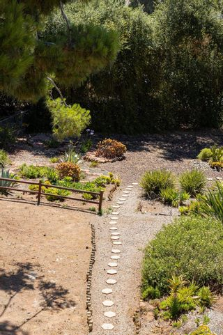 Photo 34: SOUTHEAST ESCONDIDO House for sale : 4 bedrooms : 329 Cypress Crest Ter in Escondido