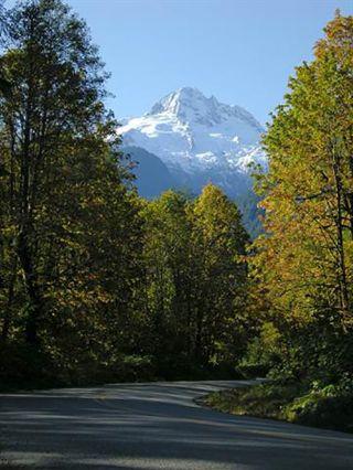 Photo 5: 14450 SQUAMISH VALLEY Road in Squamish: Upper Squamish House for sale : MLS®# R2539388
