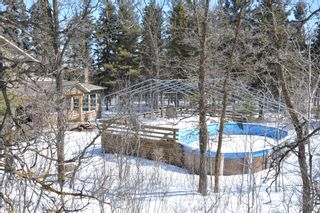 Photo 42: 70059 Roscoe Road in Dugald: Birdshill Area Residential for sale ()  : MLS®# 1105110