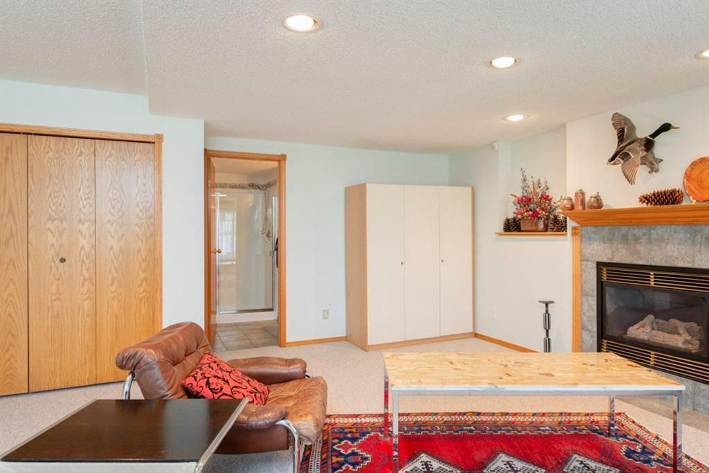Photo 34: Photos: 142 Arbour Summit Close NW in Calgary: Arbour Lake Detached for sale : MLS®# A1102229