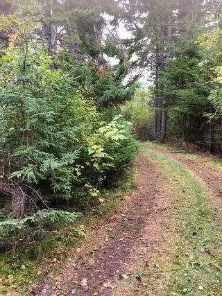 Photo 21: 1883 West Apple River in Apple River: 102S-South Of Hwy 104, Parrsboro and area Residential for sale (Northern Region)  : MLS®# 201910095