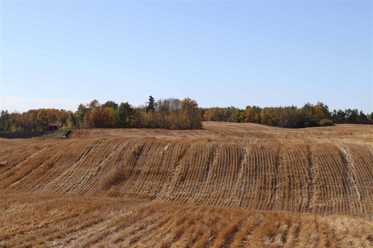 Main Photo: TWP 495 RR 232: Rural Leduc County Rural Land/Vacant Lot for sale : MLS®# E4216268