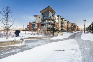 Photo 39: 303 141 FESTIVAL Way: Sherwood Park Condo for sale : MLS®# E4228912
