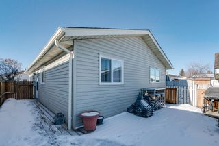 Photo 20: 10 Abalone Crescent NE in Calgary: Abbeydale Detached for sale : MLS®# A1072255
