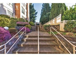 """Photo 18: 103 33731 MARSHALL Road in Abbotsford: Central Abbotsford Condo for sale in """"Stephanie Place"""" : MLS®# R2129538"""