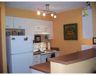 """Photo 2: 301 3438 VANNESS Avenue in Vancouver: Collingwood VE Condo for sale in """"THE CENTRO"""" (Vancouver East)  : MLS®# V654856"""