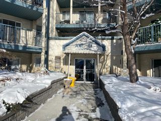 Photo 3: 404 21 Dover Point SE in Calgary: Dover Apartment for sale : MLS®# A1068387