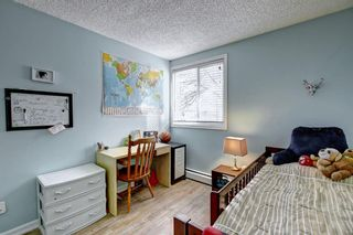 Photo 19: 8 6827 Centre Street NW in Calgary: Huntington Hills Apartment for sale : MLS®# A1133167