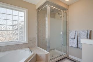 Photo 33: 160 Brightonstone Gardens SE in Calgary: New Brighton Detached for sale : MLS®# A1009065